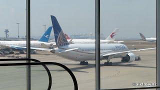 Aircraft at Sydney International Airport Terminal - 2020