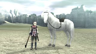 Shadow Of The Colossus - ITENS