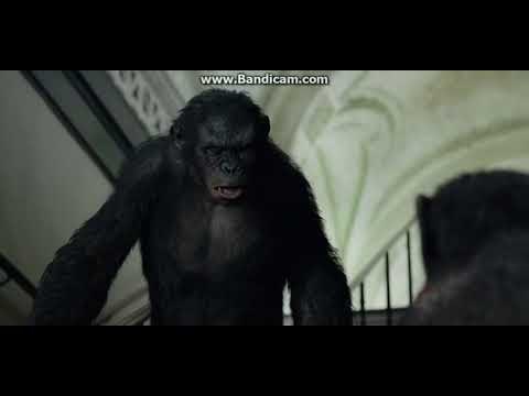 Dawn of the Planet of the Apes - Ash's Death