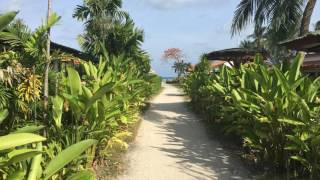 Rick Tew Academy Samui Island Thailand