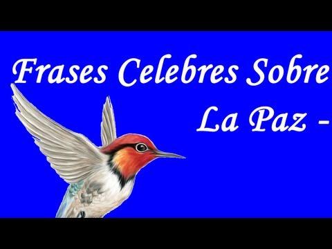 Frases Celebres Sobre La Paz Por El Dia Internacional De La Paz