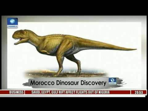 Africa 54: Morocco Dinosaur Discovery
