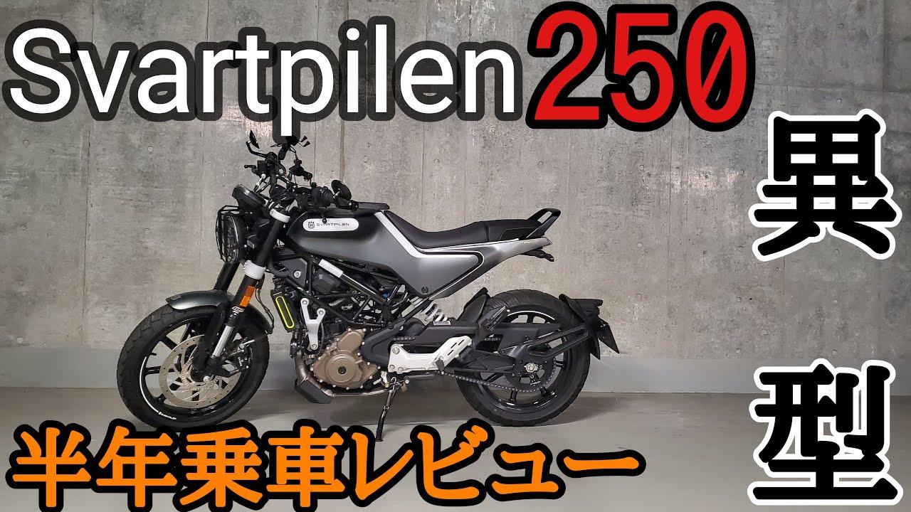 ピレン 250 ヴィット