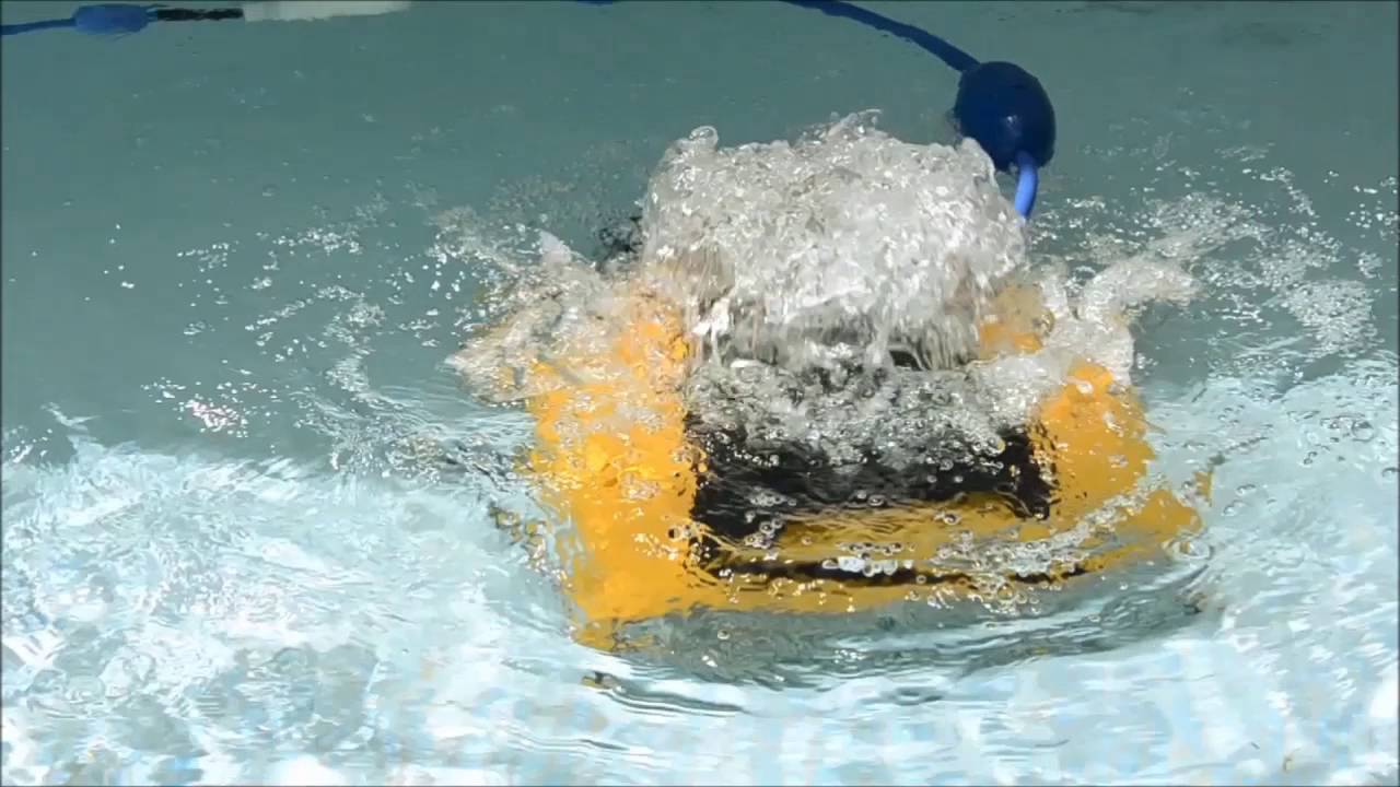Dolphin W 20 - Automated robotic cleaning for shallow pools