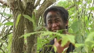 hmong new movie 2018 vim  xav deev koj thiaj tau pe ntuj qees