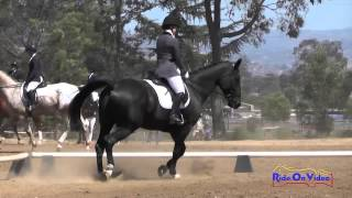 120D Ellie Hunt on Titus SR Training Dressage Copper Meadows Sept. 2015