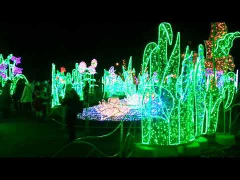 iluminacja  światła  Wilanów  2015.