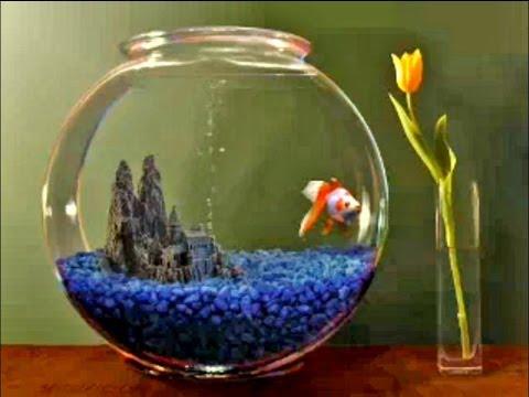 Goldfish Aquarium 2.0 Screensaver