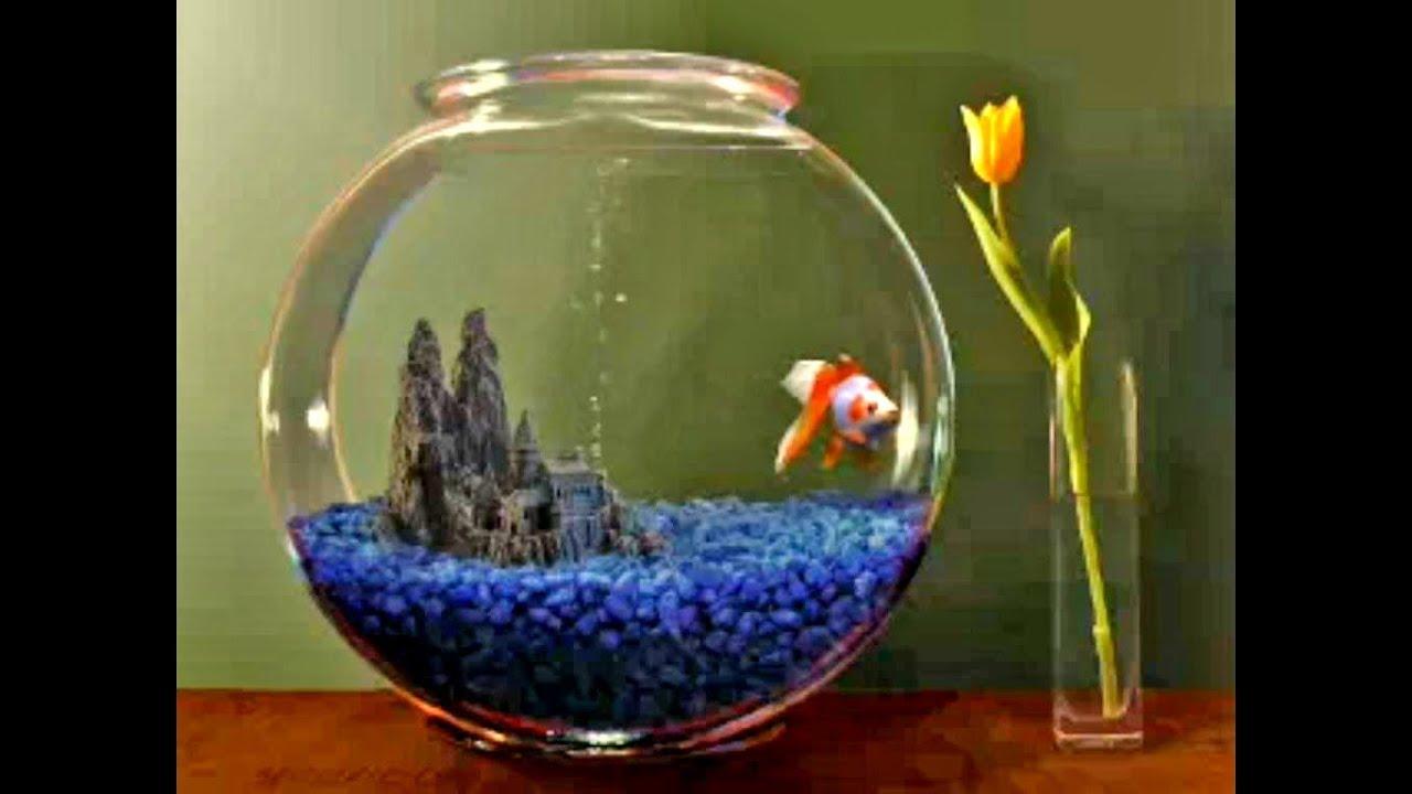 Goldfish Aquarium 2.0 screensaver - YouTube