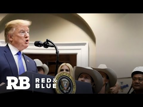 """Trump re-election campaign says they are """"unconcerned"""" with Bill Weld"""
