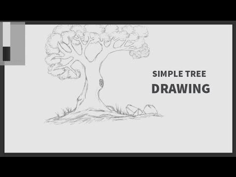 Digital Painting Basic Tutorial / Wacom tablet / Adobe