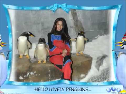 WE FOUND LOVELY PENGUIN AT SKI DUBAI