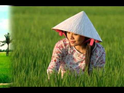 Vài nét về giọng nói Quảng Nam-ThaiThanhHoa-GiaLong69