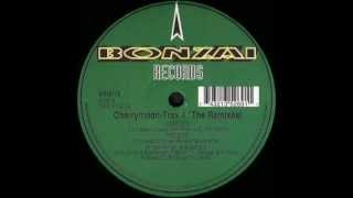 Cherrymoon Trax   Trax 4   In My Electric House Raver