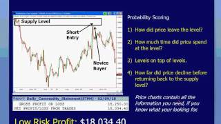 Sam Seiden: Forex Swing Trading With Supply and Demand Analysis