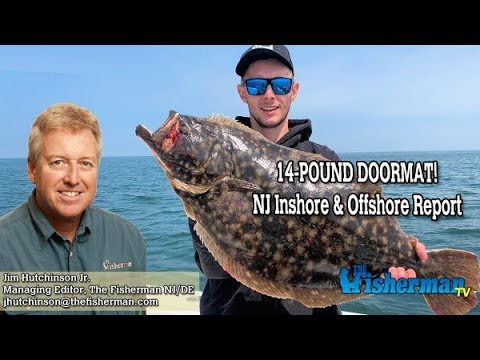 July 11, 2019 New Jersey/Delaware Bay Fishing Report With Jim Hutchinson, Jr.