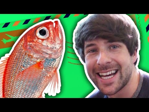 DEAD FISH IN OUR MAIL!