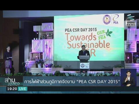 """การไฟฟ้าส่วนภูมิภาคจัดงาน """"PEA CSR DAY 2015"""" - Springnews"""