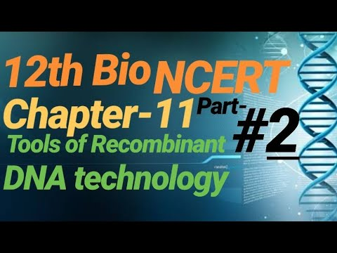 #67  12th NCERT Bio Line to line in hindi #CHAPTER_11#BIOTECHNOLOGY:PRINCIPLES AND PROCESSES thumbnail
