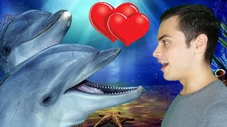 видео 10 удивительных фактов о дельфинах