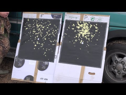Shoot and See Homemade Reactive Targets