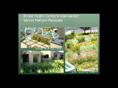 Landscape Design  - Therapeutic Wellness Gardens