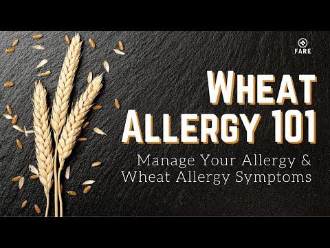 Food Allergy 101: Wheat Allergy Symptom | Wheat Allergy Food