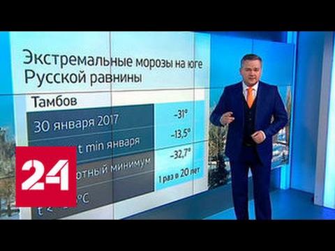 Погода 24: Атлантика отогреет замерзшие Черноземье и юг России