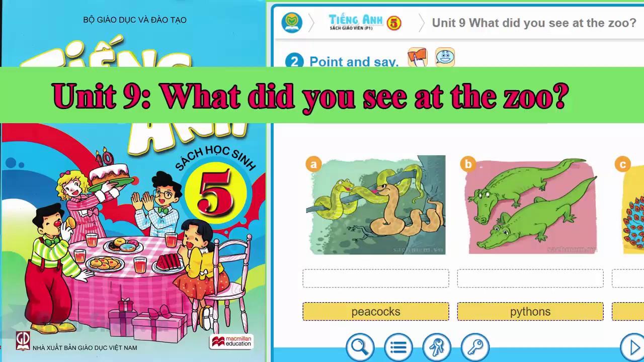 Tiếng Anh lớp 5 – Unit 9: What did you see at the zoo? ||hướng dẫn sử dựng trọn bộ sách mềm