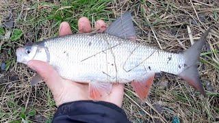 Рыбалка на реке Чусовая Первоуральск Отлично половил Отчет от 3 мая 2020 года
