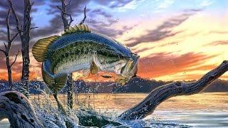 Китайская рыболовная катушка Sadei / Chinese fishing reel Sadei