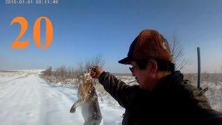 Охота на зайца в Казахстане