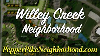 More About Willey Creek