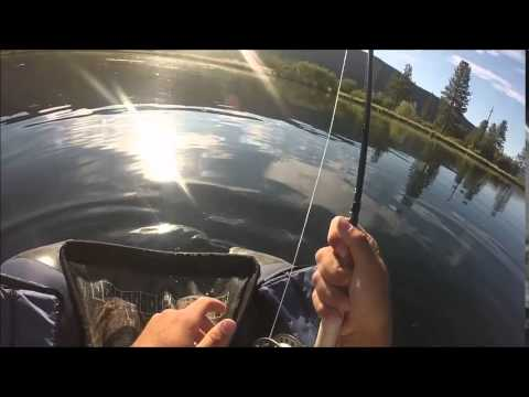 Northern California stillwater dry fly fishing