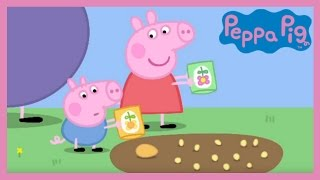 Peppa Pig - Peppa and George's Garden (Full Episode) thumbnail