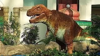 후룸라이드 공룡 애니매트로닉스(1)