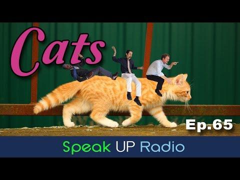 英語リスニングラジオ【Ep.65】猫//Cats - Speak UP Radio