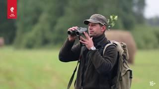 Сибирская охота на косулю