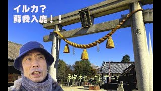 日本で唯一とされている、蘇我入鹿をお祀りする 入鹿神社 ゆるゆる動画...