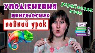 Уподібнення приголосних. Повний відеоурок від ВРГД. Українська мова. ЗНО