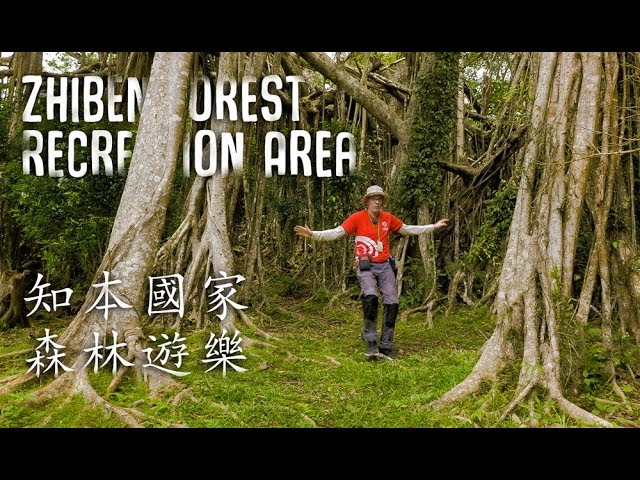 Train Trip Part 4 -- Taitung; Zhiben Forest Recreation Area (火車之旅第四 --台東知本森林遊樂區)