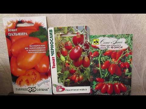 Мой выбор томатов для сушки.10.11.2019