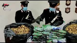 Detenevano illegalmente oppio e sigarette di contrabbando, arrestati due insospettabili a Santeramo