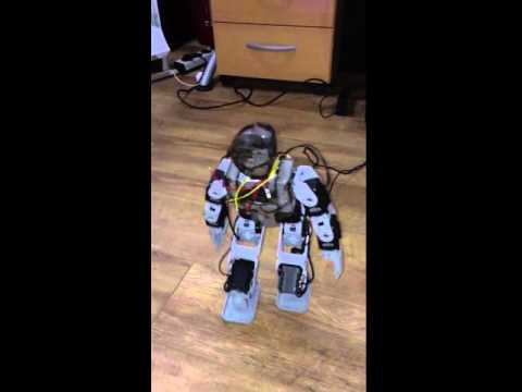 Final Walk attempt Humanoid Raspberry PI Zero Robot on Java