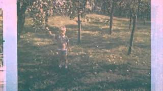 Giblets Of Yesterday - Apples On Trees