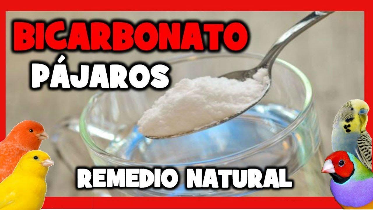 Remedios caseros para la gota bicarbonato