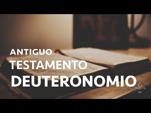 Antiguo testamento 8: Deuteronomio - Javier Julve