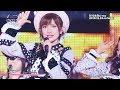 Akb48単独コンサート~ジャーバージャって何?~dvd&blu-rayダイジェスト映像公開  Akb48公式