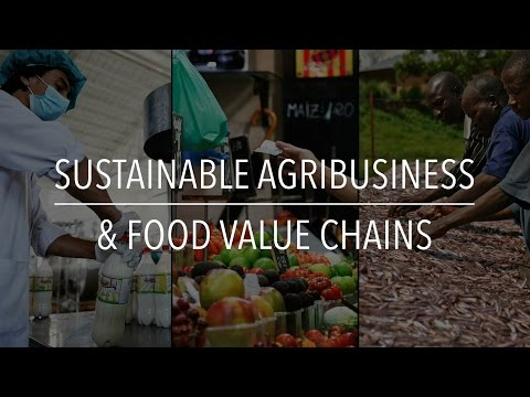 Sustainable Agribusiness & Food Value Chains
