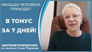 Мышцы человека приходят в тонус за 7 дней Елена Плужник